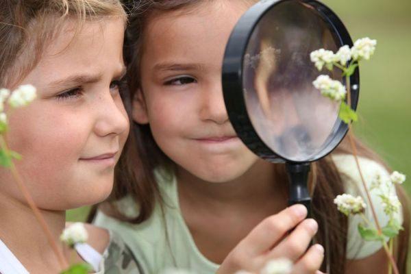 Photographie d'enfants jouant avec une loupe