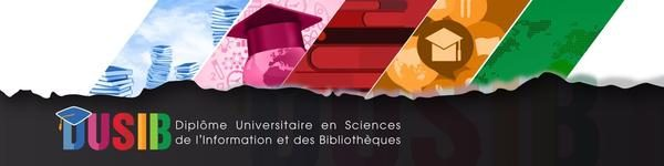 Logo du DUSIB