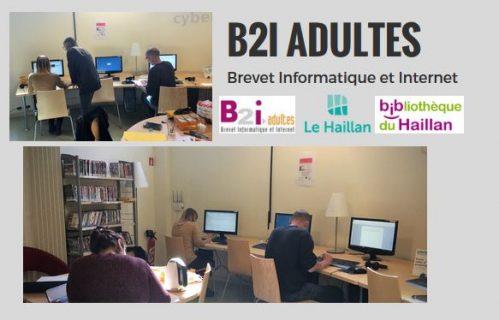 Visuel de l'action B2i