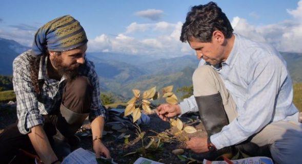 Image du film avec deux hommes accroupis qui observent les feuilles d'un arbuste dans la montagne